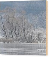 Trees On A Frozen Lake Wood Print