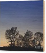 Trees On A Hill In Sunset Wood Print