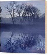 Trees On The Lake Front Wood Print