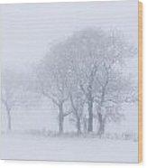 Trees Seen Through Winter Whiteout Wood Print