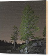 Trees Under Stars Wood Print by Sean Duan