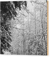Trees Under The Snow Wood Print