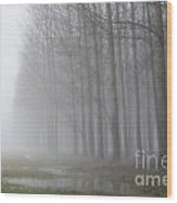 Trees With Fog And Snow Wood Print