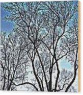 Treescapade Wood Print