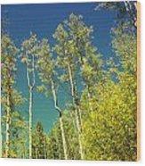 Treetop Color Wood Print