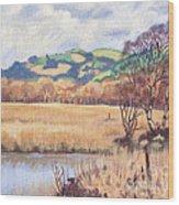 Cors Caron Nature Reserve Tregaron Painting Wood Print