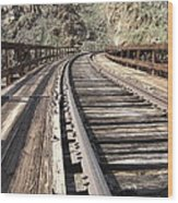 Trestle Tracks Wood Print