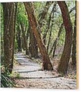 Trestle Walk Wood Print