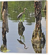Tricolored Reflection Wood Print