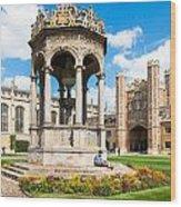 Trinity College Wood Print