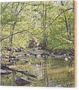 Trinity Foundry Wood Print