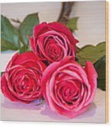 Trio Of Pink Roses Wood Print