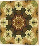 Trio Star Wood Print