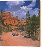 Tropic Canyon In Bryce Canyon Park Wood Print