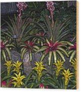 Tropical 1 Wood Print by Wanda J King