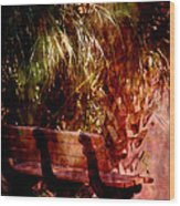 Tropical Bench Wood Print