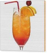 Tropical Cocktail Wood Print by Elena Elisseeva