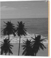 Tropical Dreaming Wood Print