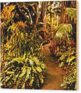 Tropical Forest Wood Print