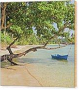 Tropical Island Scenery Wood Print