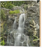 Tropical Rainforest And Waterfall Wood Print