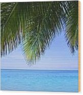 Tropical View Wood Print