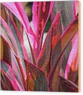 Tropical Vision II Wood Print