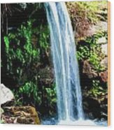 Tropical Waterfall And Pond Wood Print