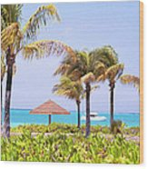 Tropical Winds Wood Print