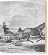 Trotting Horse, 1853 Wood Print