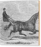 Trotting Horse, 1861 Wood Print