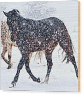 Trotting In The Snow Wood Print