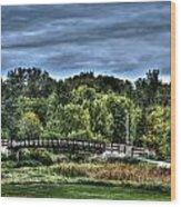 Troubled Water Wood Print by Dan Crosby