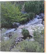 Trout Creek Wood Print