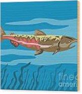 Trout Fish Retro Wood Print by Aloysius Patrimonio