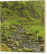 Trout Run Creek 4 Wood Print