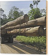 Truck With Timber From A Logging Area Wood Print