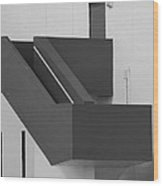 Truly Nolen Steps In Black And White Wood Print