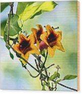 Trumpeting Spring Wood Print
