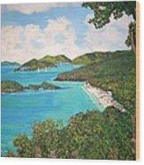 Trunk Bay Wood Print