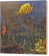 Trunkfish And Anemone Fish Wood Print