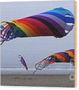 Go Fly A Kite 9 Wood Print