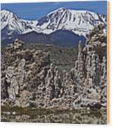 Tufa At Mono Lake California Wood Print