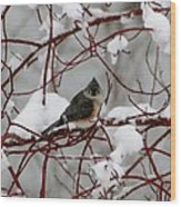 Tuft Winter Wood Print