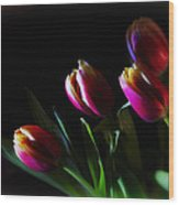 Tulip Dream Wood Print