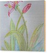 Tulip Duo II Wood Print
