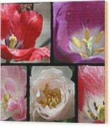 Tulip Sampler Wood Print