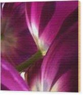 Tulip Weave Wood Print