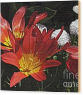 Tulips And Daisies Wood Print
