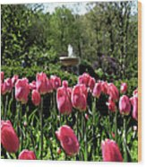 Tulips And Fountain Wood Print